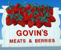 Govin's Meats and Berries
