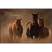 Three At Sunset Mounted Print Art0036
