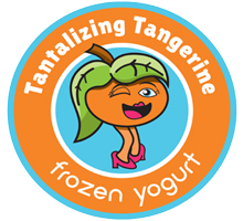 Tantalizing Tangerine Frozen Yogurt