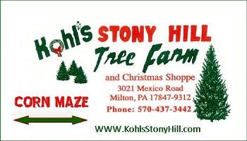 A Family 4-Pack to Kohl's Stony Hill Tree Farm