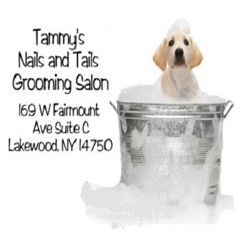 $30 gift certificate towards grooming HALF OFF