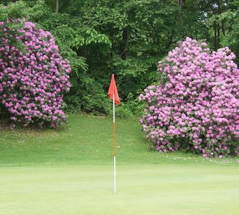 Aubrey's Dubbs Dred Golf Course in Butler!