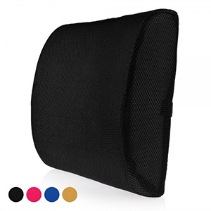 Lumbar Seat Cushion - $23 with FREE Shipping!