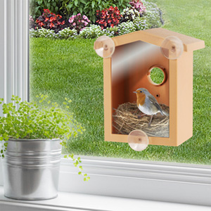 Look-In Bird House- $20 with Free Shipping
