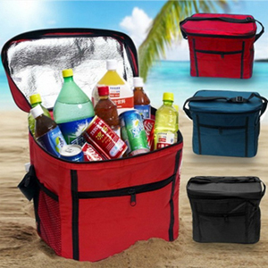 Insulated Cooler Bag - $16 with FREE Shipping!