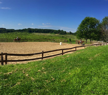 Lucky Top Ranch in Bentleyville!
