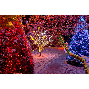 Bethlehem Hills Light Park-Half Off Admission