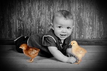 Cutie Pie Photo Studio
