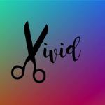 Vivid Hair Design