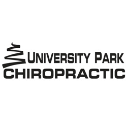 University Park Chiropractic - 3 Visit Adjustment Package for 39.00
