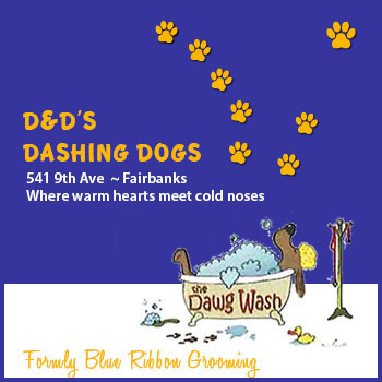The Dawg Wash - $25 GC with Dee or Jennie