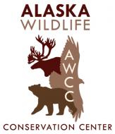 Alaska Wildlife Conservation Center - Walk on the Wildside Tour for Two