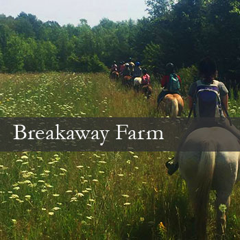 Breakaway Farm