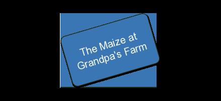 The Maize at Grandpa's Farm