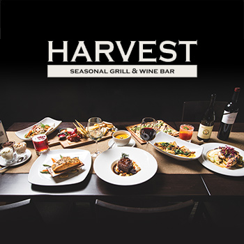 Harvest Seasonal Grill & Wine Bar Experience