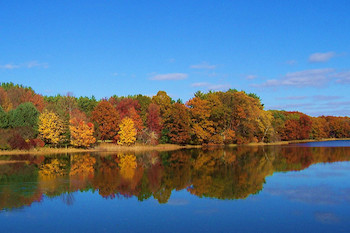 Fall Foliage Cruises from the Gateway Clipper Fleet! Good for TWO People!