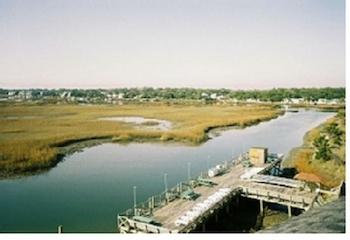 Week of 6/22 at Sea Watch Inn in Garden City, SC!