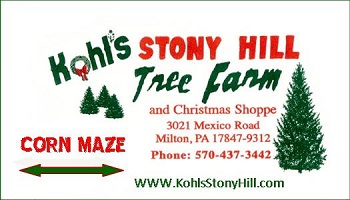 A Family 4-Pack to Kohl's Stony Hill Tree Farm
